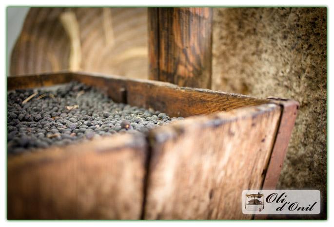 Museo Aceite Onil - Herramientas